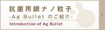 抗菌用銀ナノ粒子 -Ag Bullet のご紹介-